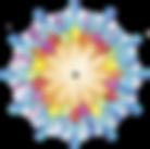 Logo Conciencia 5d