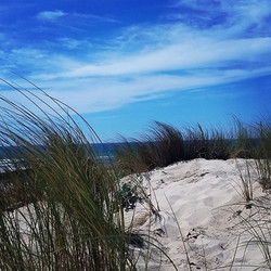 Derrière les dunes