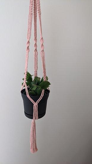 Macrame Plant Hanger +  Cactus