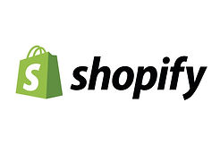 shopify-lesformationweb-david-michigan.j