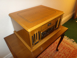 Record player demonstration item