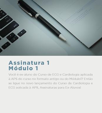 card_mod_1-02.png