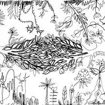 Deer Park Doodle III