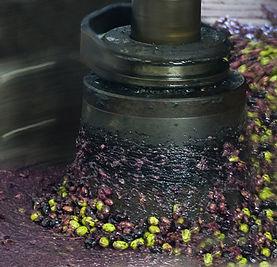Malage-olives.jpg