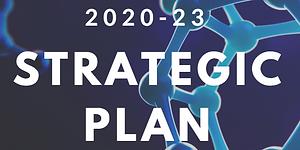 strategic plan image.PNG