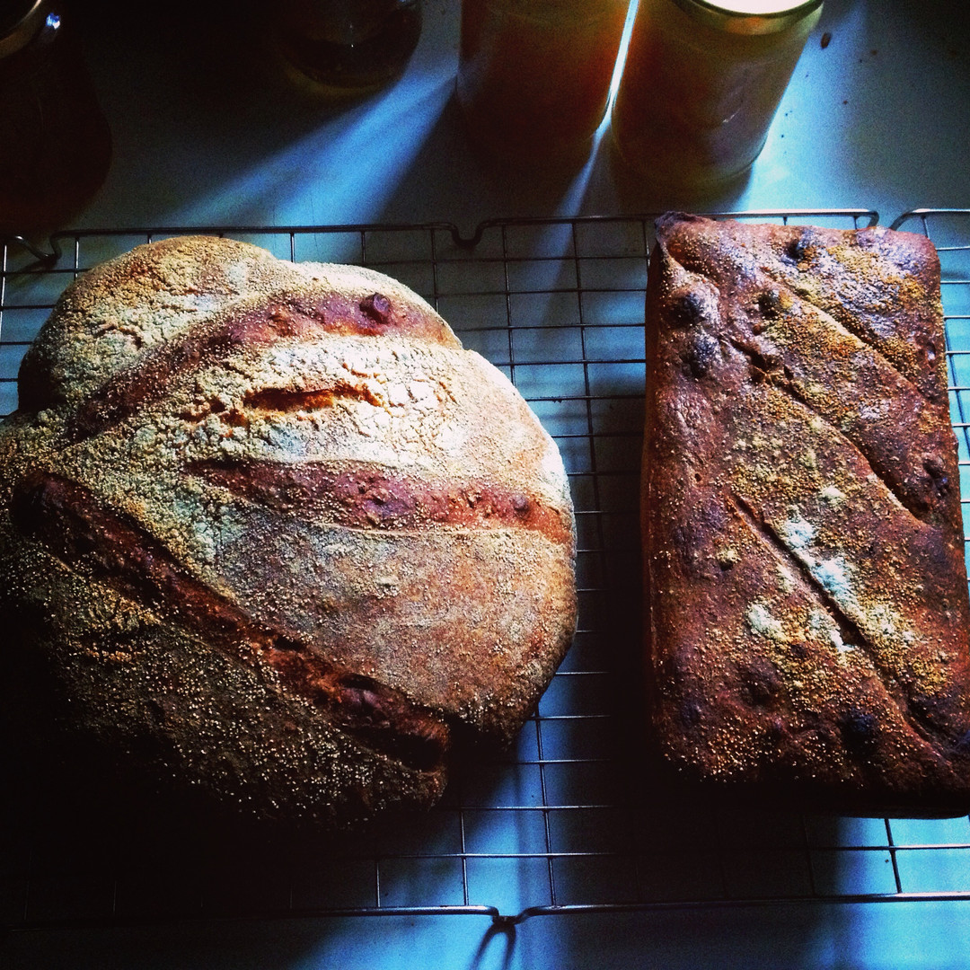 Sourdough x2