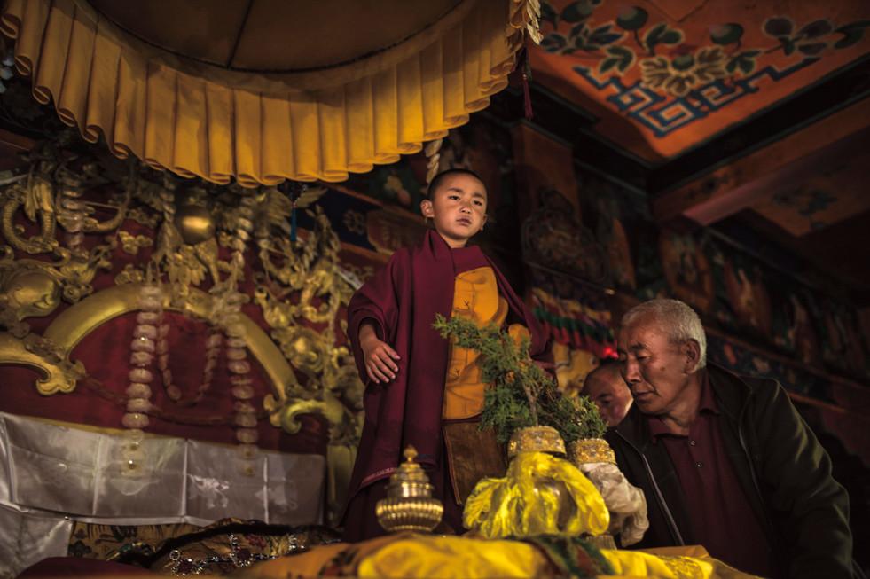 Tsering Dorje (7) reconhecido como o mestre budista reencarnado Denma Gonsar Rinpoche, que morreu em 2005, senta-se pela primeira vez no trono no dia de sua entronização. Monastério de Denma Gonsar, Kham, Tibet, 2014.