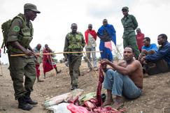 Sobrevivência. Maasai Mara, Tanzânia, 2015.