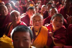 Os monges sentam-se do lado de fora da sala de meditação para a cerimônia de entronização do 20˚ Denma Gonsar Rimpoche. Monastério de Denma Gonsar, Kham, Tibet 2014.
