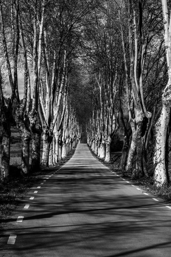 Old road at Sant Julià de Vilatorta - Barcelona (Spain)