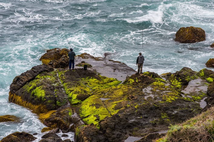 Green moss at Playa San Juan - Tenerife - Canary Islands (Spain)