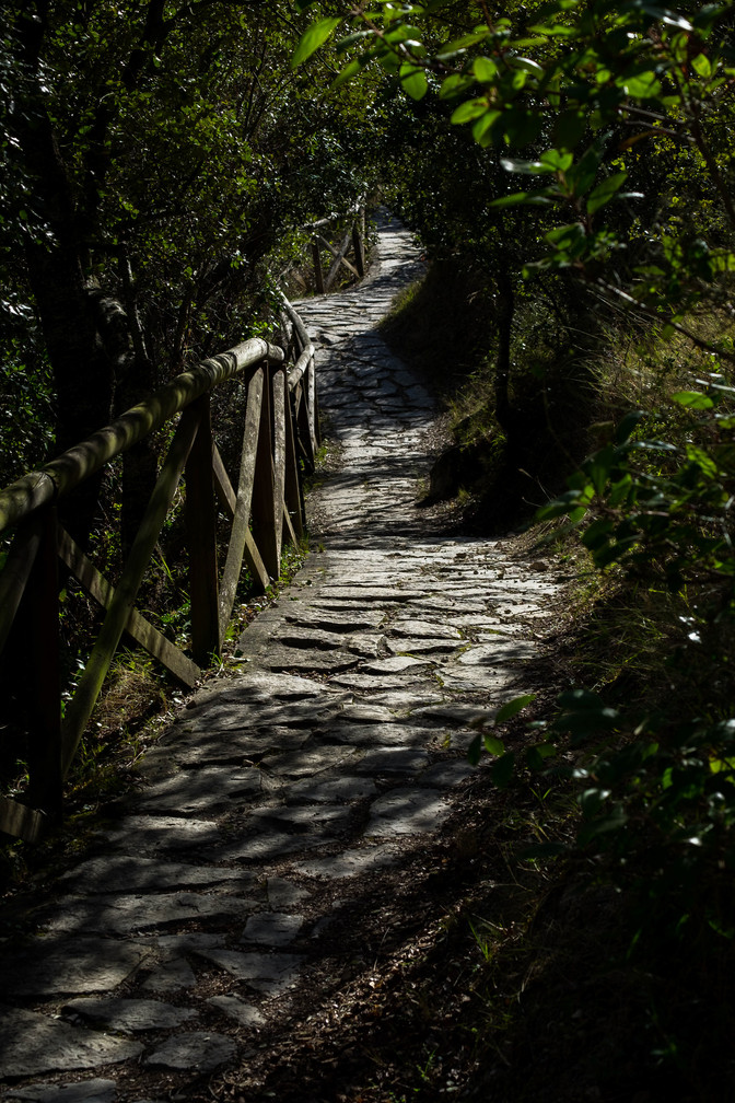 Path close to the river in Oña - Burgos (Spain)