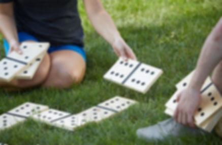 Dominos Géants JFD 35