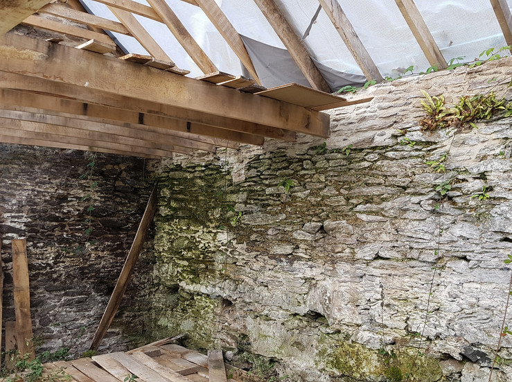 Green oak roof timbers harvested from Butterhills wood