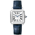 Cartier%201_edited.png
