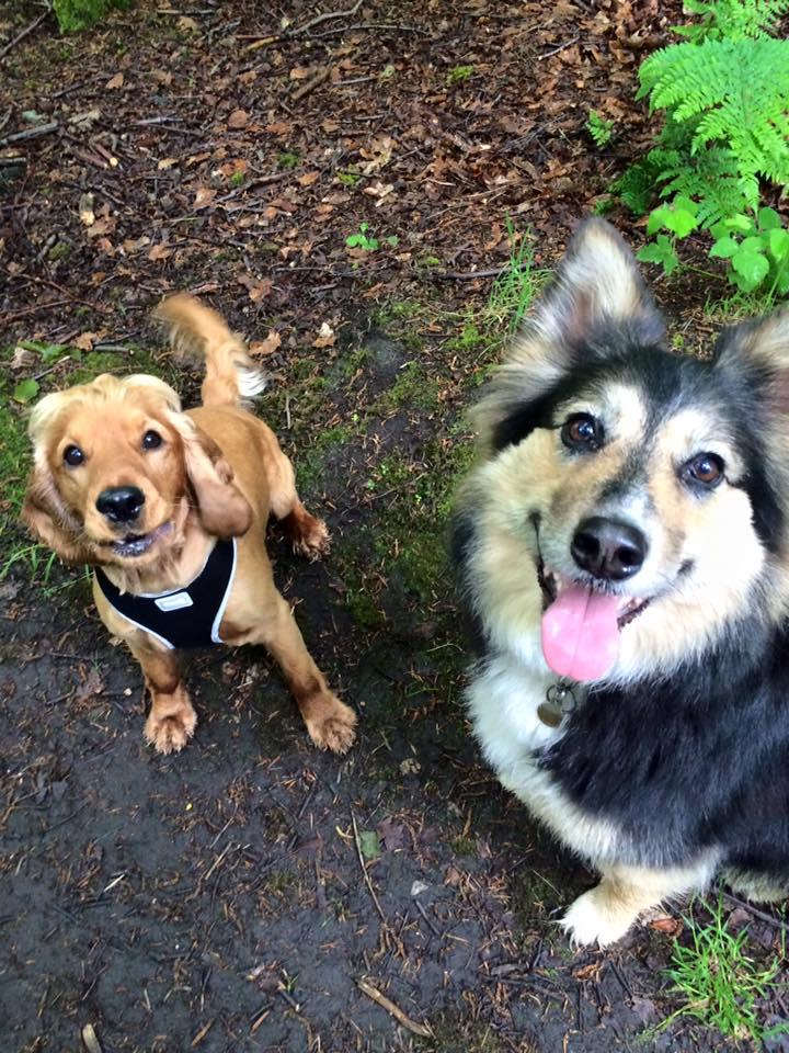 Barney & Skye