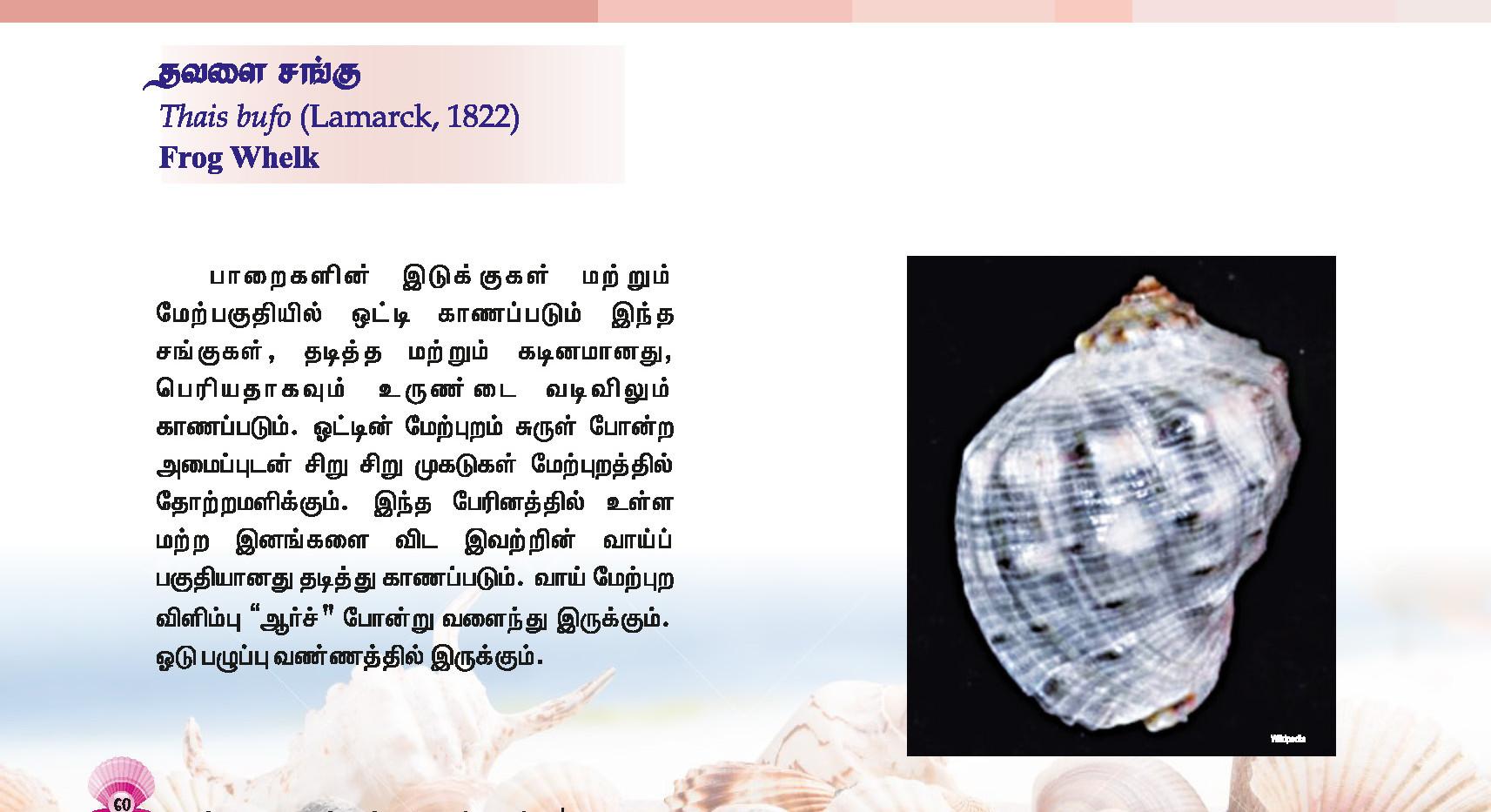 57 - 64_Page_4.jpg