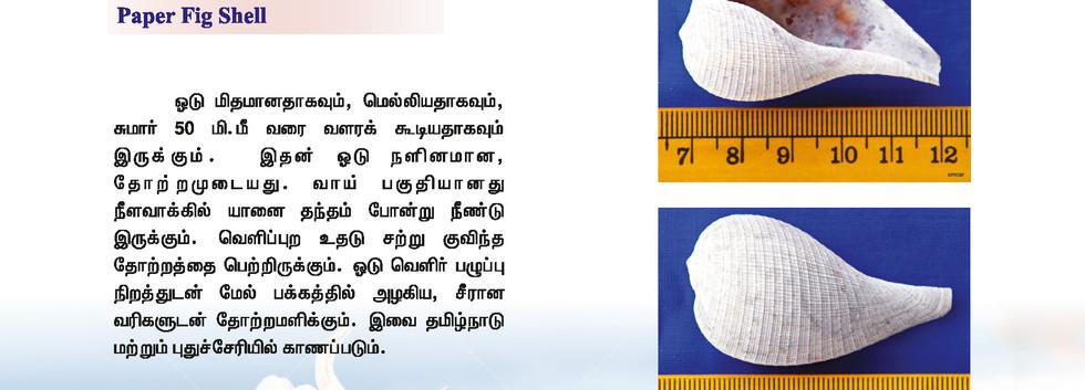 33 - 40_Page_2.jpg
