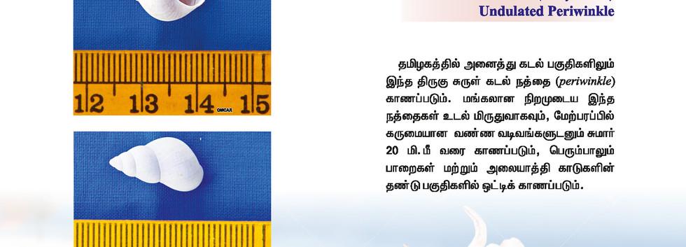 25 - 32_Page_3.jpg