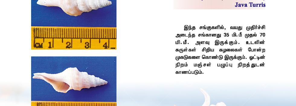 65 - 72_Page_3.jpg