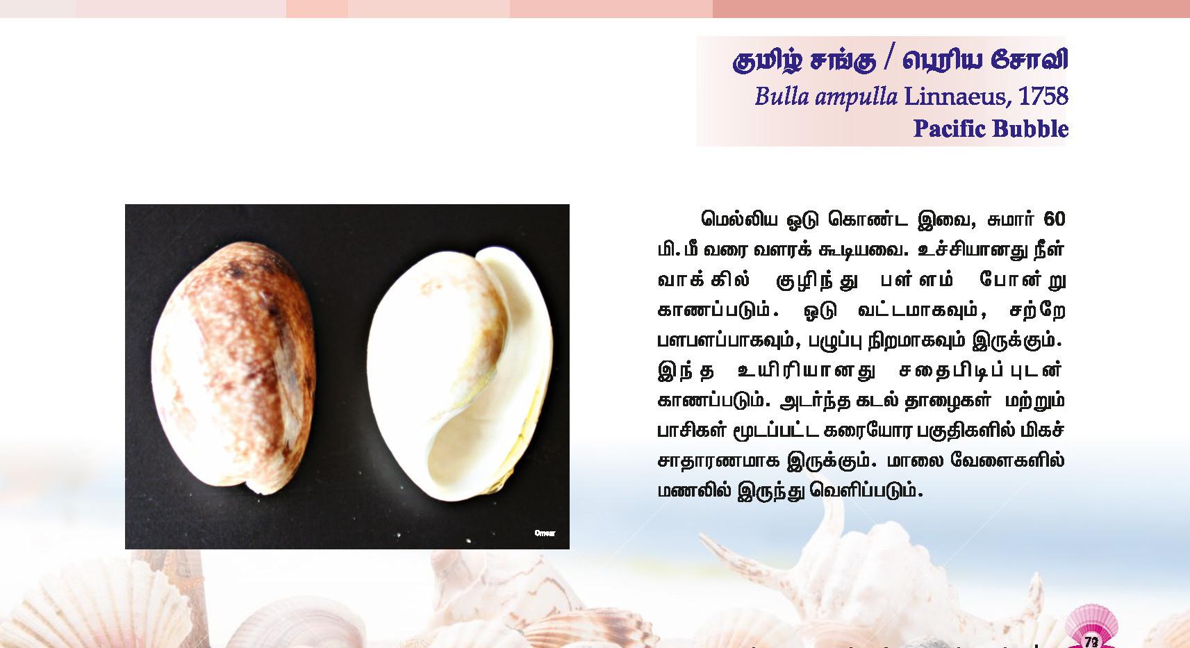 73 - 80_Page_1.jpg