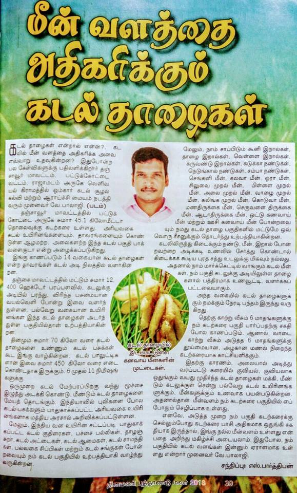 Tamil daily newspaper 2019