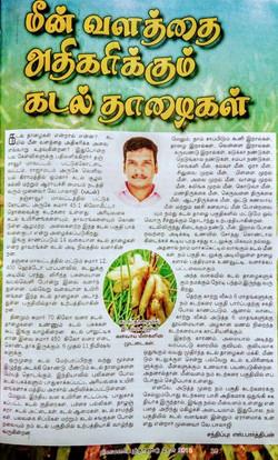Tamil daily newspaper 2019