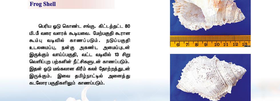 25 - 32_Page_6.jpg