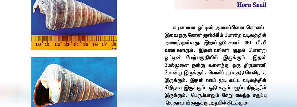 73 - 80_Page_3.jpg