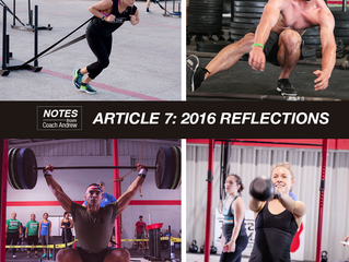 Article 7: 2016 Reflections