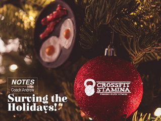 Article 6: Surviving the holiday season
