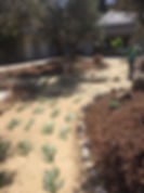 easter garden.jpg