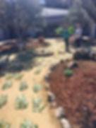 easter garden 2.jpg