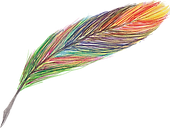 2021-0510-plume-multicolore_edited.png