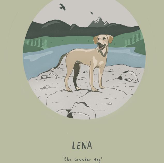 Lena 'the wander dog'