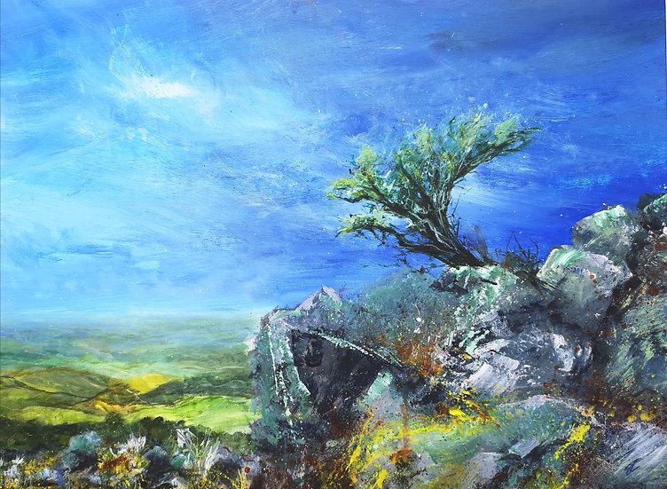Dartmoor Edge