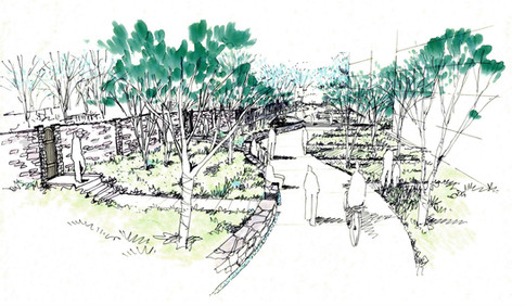 Capital Crescent trail Connection Sketch