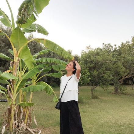 Indoor Plant Passions: Silvia Asuni