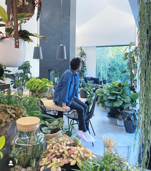 Houseplant Styling: Six things we learned talking to Nathan Thomas this week