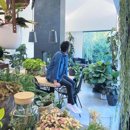 Indoor Plants Passion: Nathan Thomas