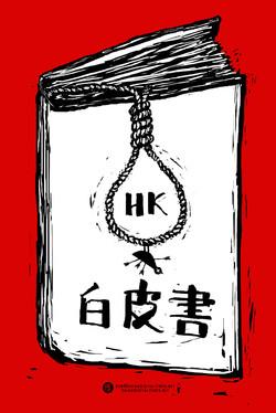 香港白皮书 cdt.jpg