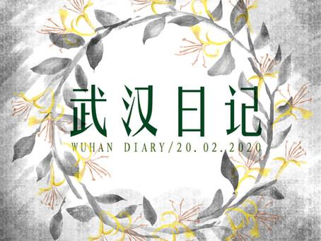 Day29 Wuhan Diary 武汉日记