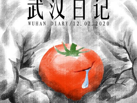 Day21 Wuhan Diary 武汉日记