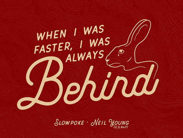 Neil Young Rabbit Illustration