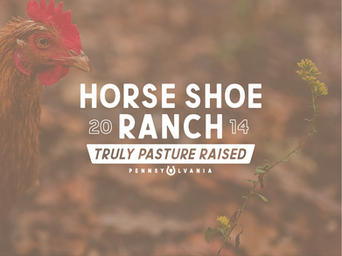 HORSE SHOE RANCH 1