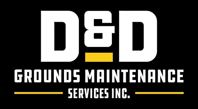 D&D_LogoGlow-01.png