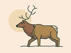 Elk Line Art Illustration