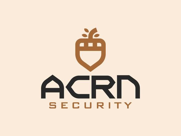 Security Company Logo Design