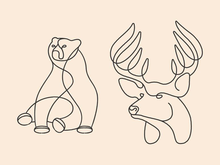 Animal Lineart Illustrations