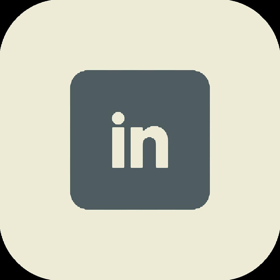 Luis Vizcarrondo LinkedIn page